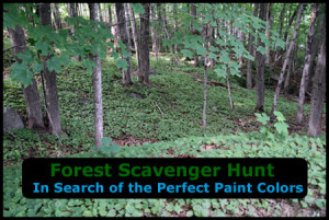 Forest Scavenger Hunt for Kids- The Search of the Perfect Paint Color. Based on the Sophie Mouse book series.