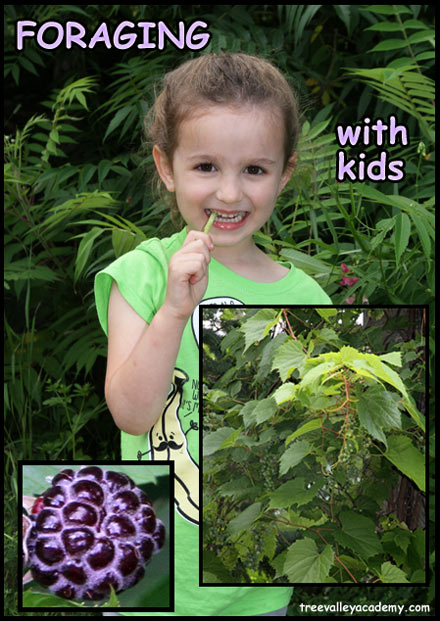 Learning and teaching kids foraging.