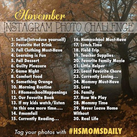 An Instagram photo challenge for the month of November 2015. If you're a homeschooling mom you're invited to participate. Tag photos with #HSMOMSDAILY so we can all find each others photos.