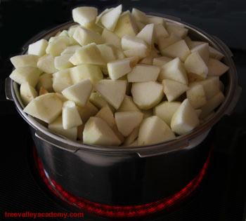 cooking apples for apple pie #apples #applepie #treevalleyacademy