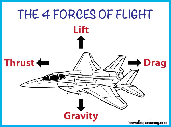 the 4 forces of flight lift gravity thrust drag