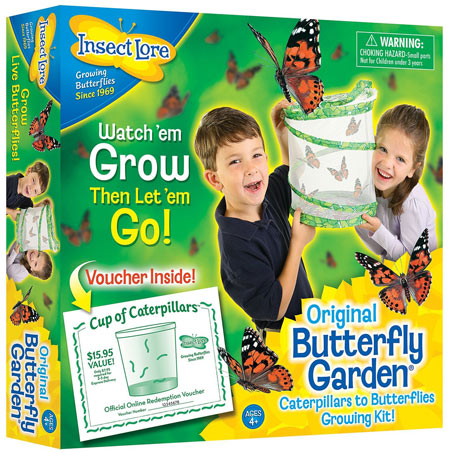 Science Toy for Kindergarten aged kids: Butterfly Garden