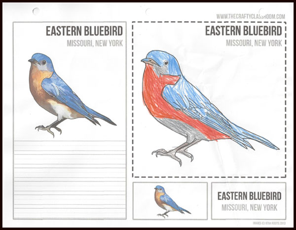 Review of the USA Activity Bundle from The Crafty Classroom. The bundle includes USA State Bird Art Cards.