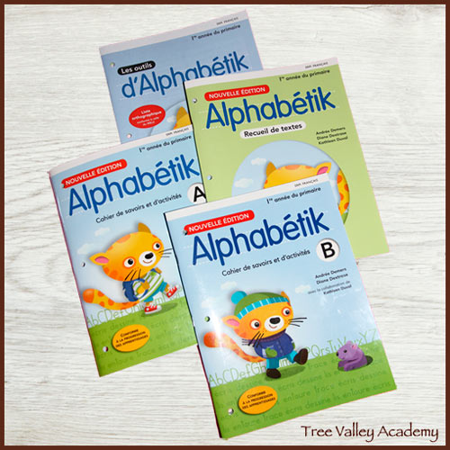 Grade 1 & 2 Curriculum Ideas for FSL (French Second Language) parents wanting to teach their child to read and write in french, equivalent to what a public school student in a french school would be learning. Homeschooling french.