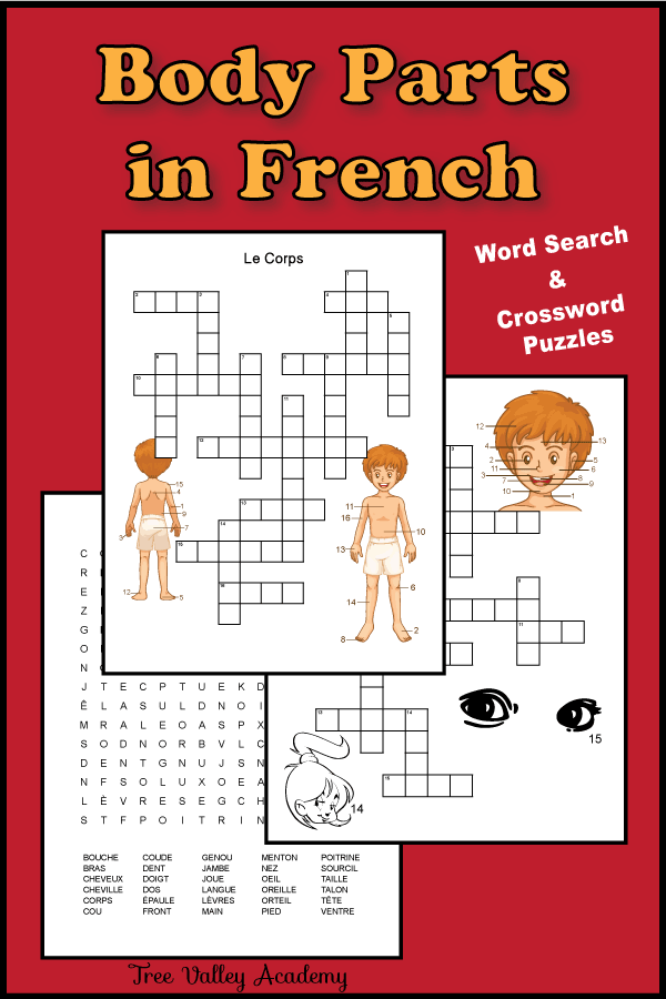 Grab a french body parts worksheet. Free printable crossword puzzles and a word search to practice the names of body parts in french. | Fiche de travail sur les parties du corps. Mots croisés et mots cachés gratuits. #french #frenchworksheets #freeprintables #homeschool #learnfrench #treevalleyacademy