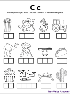 A free printable letter C sound worksheet perfect for 1st grade students. There's 12 black and white images of items and kids need to sound each word out, and identify which syllables contains a hard c sound. Kids will mark an X in the box representing that syllable. Free downloadable pdf includes answer page.
